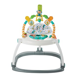 Fisher Price Renk Karnavalı Jumperoo FDG98